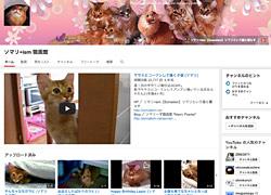 ソマリ+ism 猫画館/YouTube