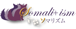 Somali+ism【ソマリズム】ソマリ猫と暮らす