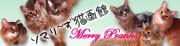 ソマリ〜ず猫画館 *Merry Pranks*