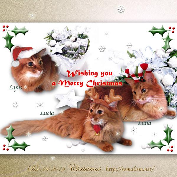 ソマリのクリスマスカード