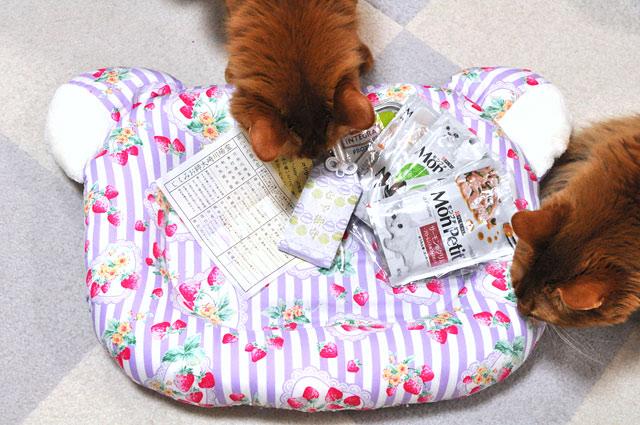 ソマリ〜ずと猫ベッド