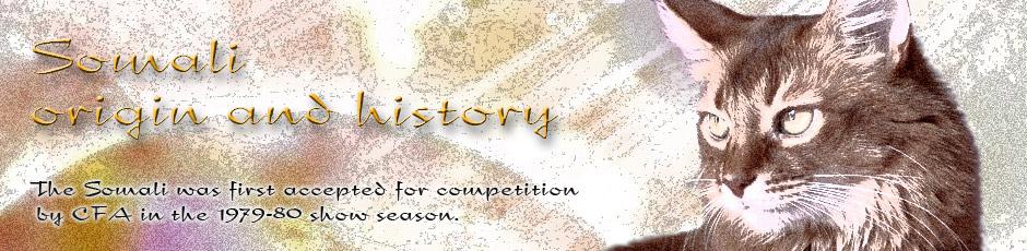 ソマリの起源と歴史